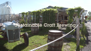 Sustainable Craft Brewing: A look at Beau's green initiatives