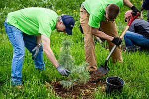 Tröegs helps plant trees!